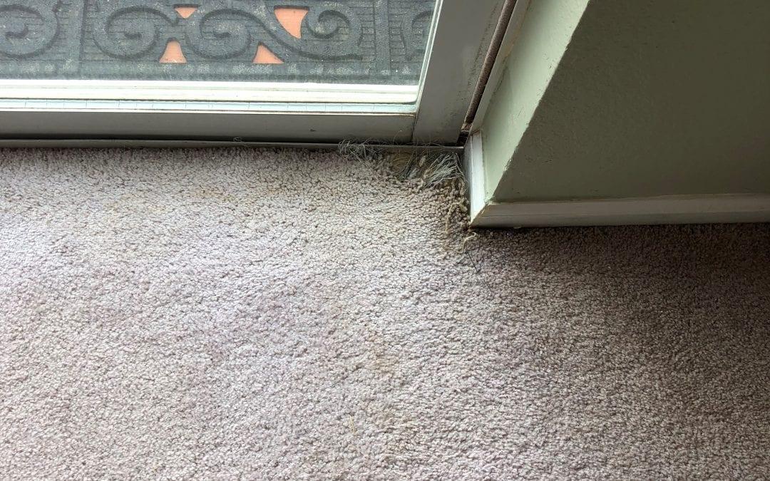 Recent Repair Jobs Northern Arizona Carpet Repair Amp Cleaning