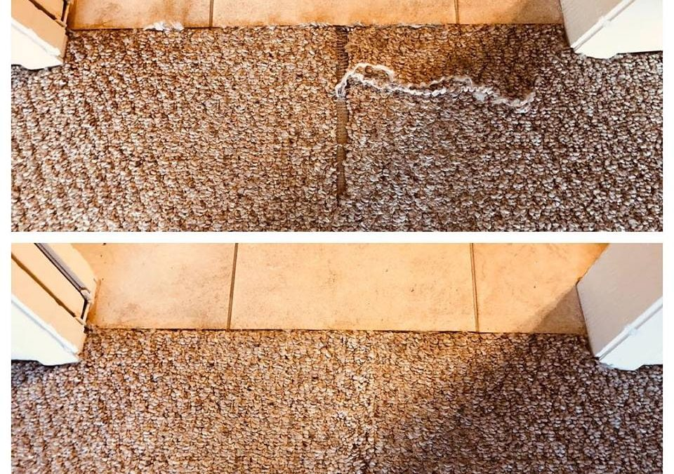 Prescott, AZ: Berber Carpet Repair